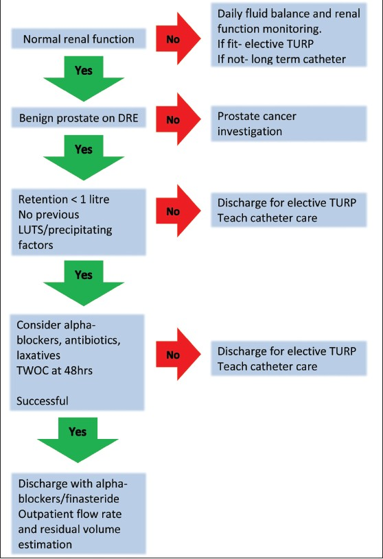 Management Of The Complications Of Bph Boo